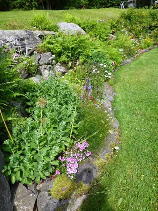 Rock garden, long view