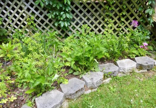 Rock Garden, section 5