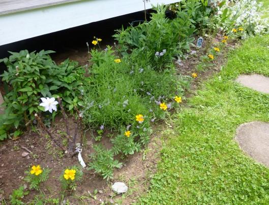 Side porch garden