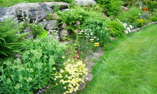 Rock Garden, mid-July