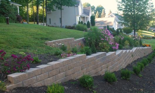 Terrace perennials